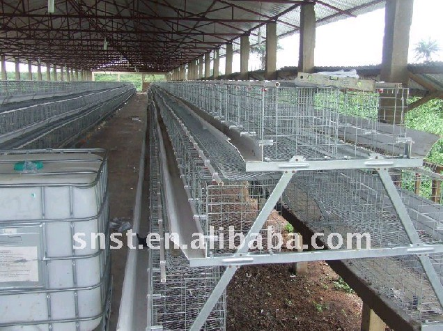 Layer Poultry Cage ST-390ALC